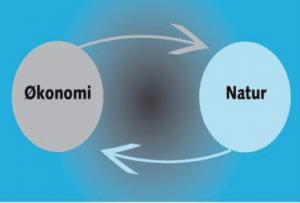 økonomi og natur