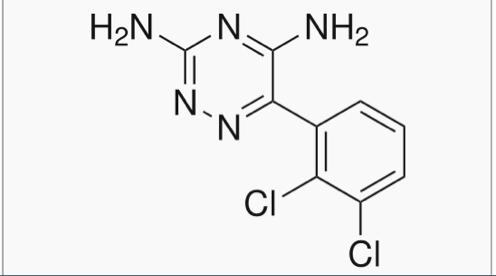 Lamotrigin
